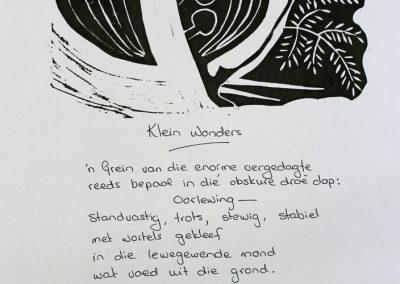 Klein wonders